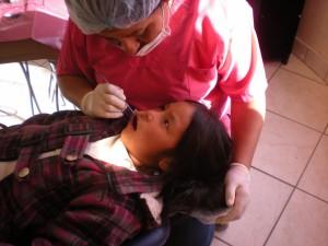 Flor chez le dentiste